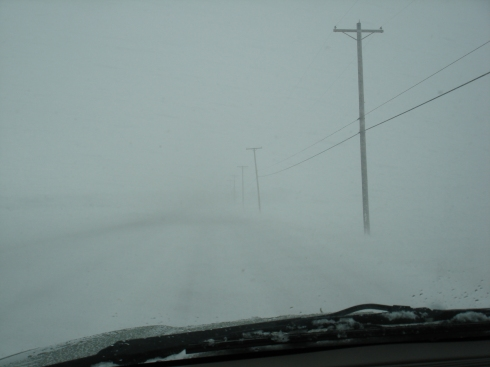 Whiteout in Whitehouse, Ohio.